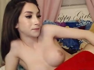 Big Tits, Brunette, Rough, Shemale, Solo, Stockings, Tranny, Webcam,