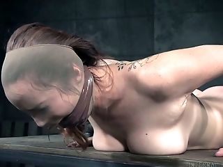 BDSM, Beauty, Bondage, Cute, Dildo, Freckled, Horny, Rough, Slut, Torture,