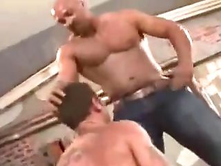 Bear, Fetish, Muscular, Twink, Wrestling,